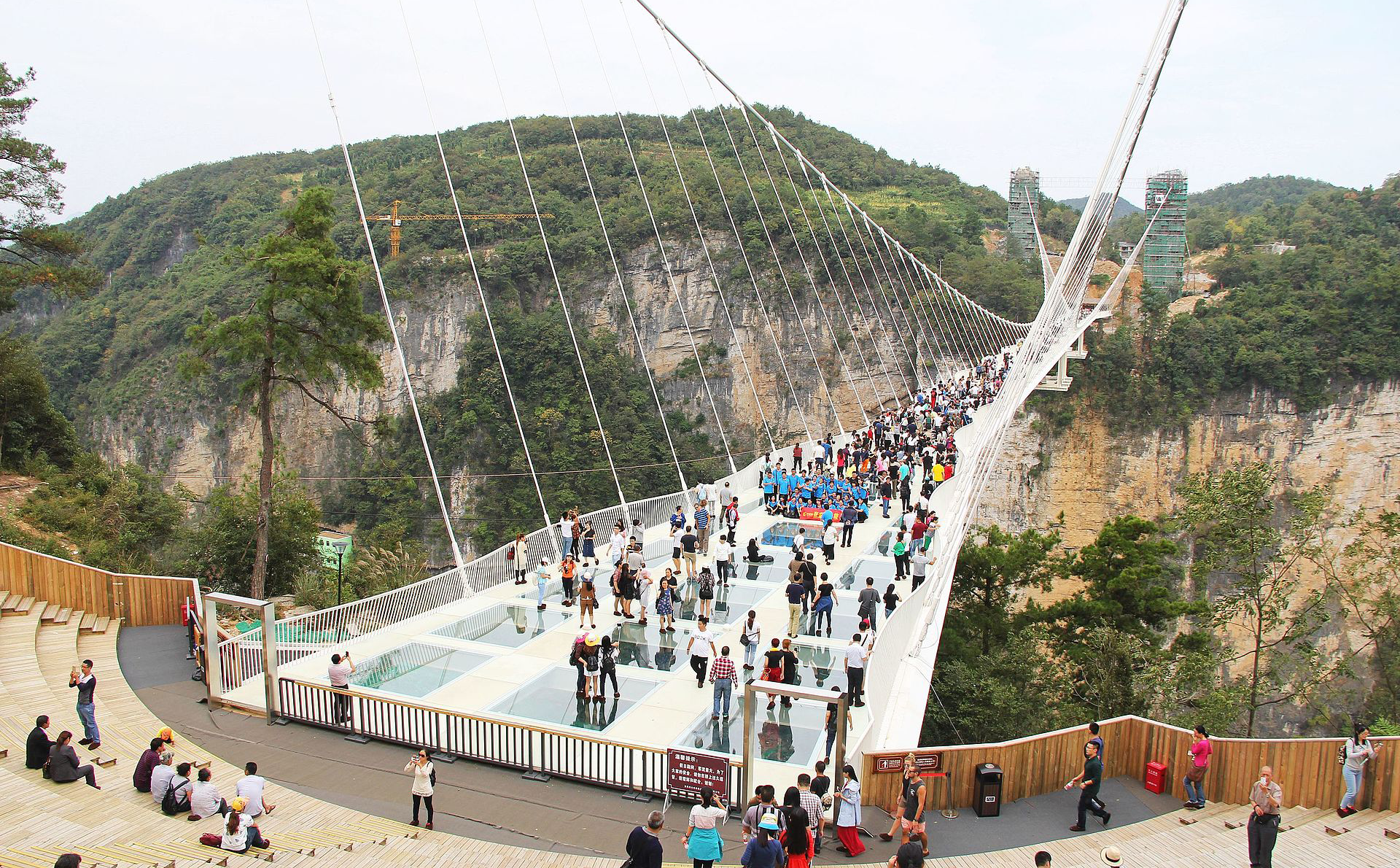 Zhangjiajie Glass Bridge.jpg